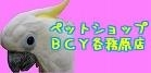 BCY各務原店 120×60.jpg